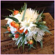 japonica flowers3