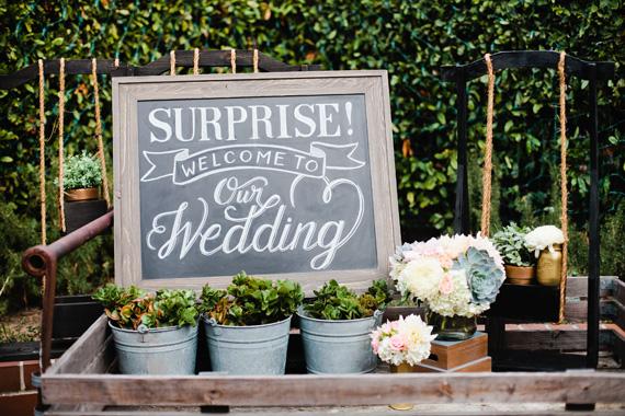 The surprise wedding junglespirit Gallery